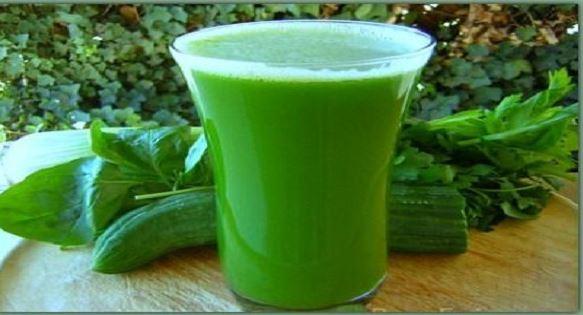Zielona krew roślin. Życiodajne właściwości chlorofilu na ludzkiorganizm