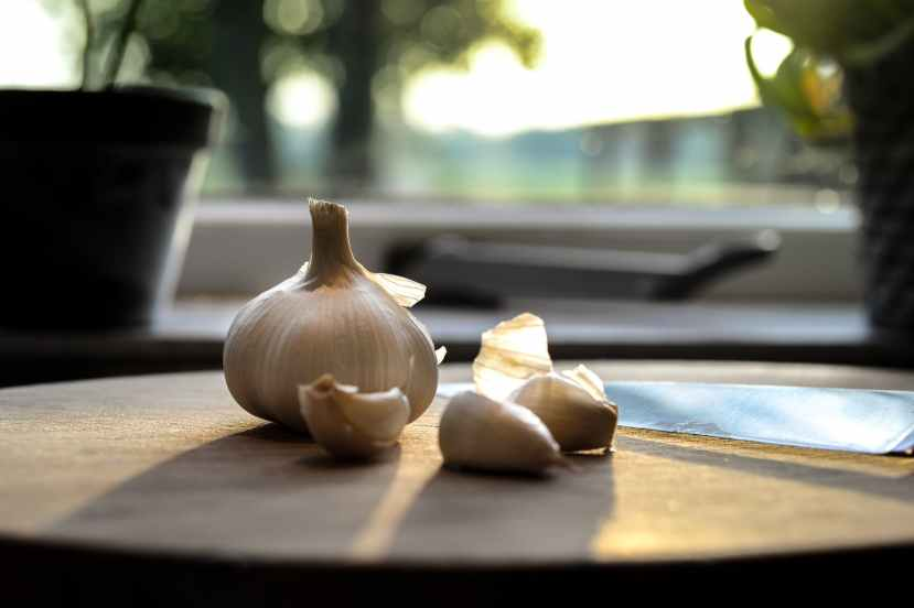 Powerful garlic stronger than medicines